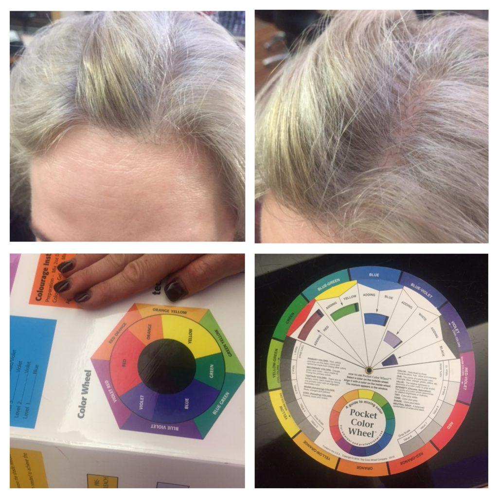 collage-colour-wheel